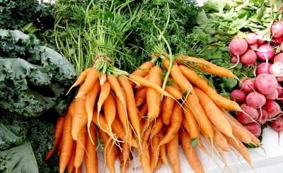 FM Carrots